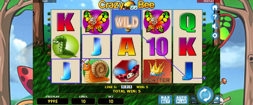 Crazy Bee - play
