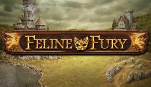 รีวิวเกมสล็อตมาใหม่ Feline Fury
